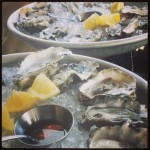 New Instagram: oysters round 2