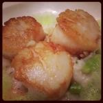 New Instagram: i don't normally eat scallops, but these scallops right here… these scallops right here… these are my scallops. #scallops #seafood #food #nomnom #foodporn #好吃 #海鮮