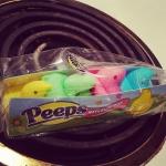 New Instagram: they're a real chick magnet @jabbanobotha @anniecheese @minikittycity #peepsjokes #easter #candy #sweets #notsureifthisisforeatingor #humancentipeep
